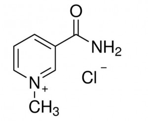 1-Methylnicotinamide