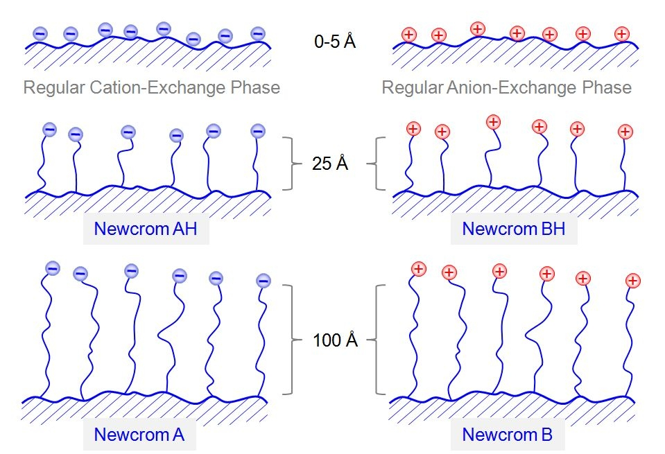Comparison between traditional and various Newcrom Ion-Exchanger